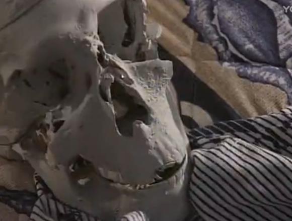 重温经典,我和僵尸有个约会系列,最好看的几个故事情节